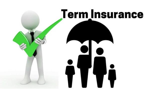 Here's How to Choose the Right Term Insurance Plan