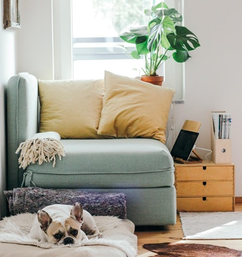 Tips For Making Your Living Room More Liveable