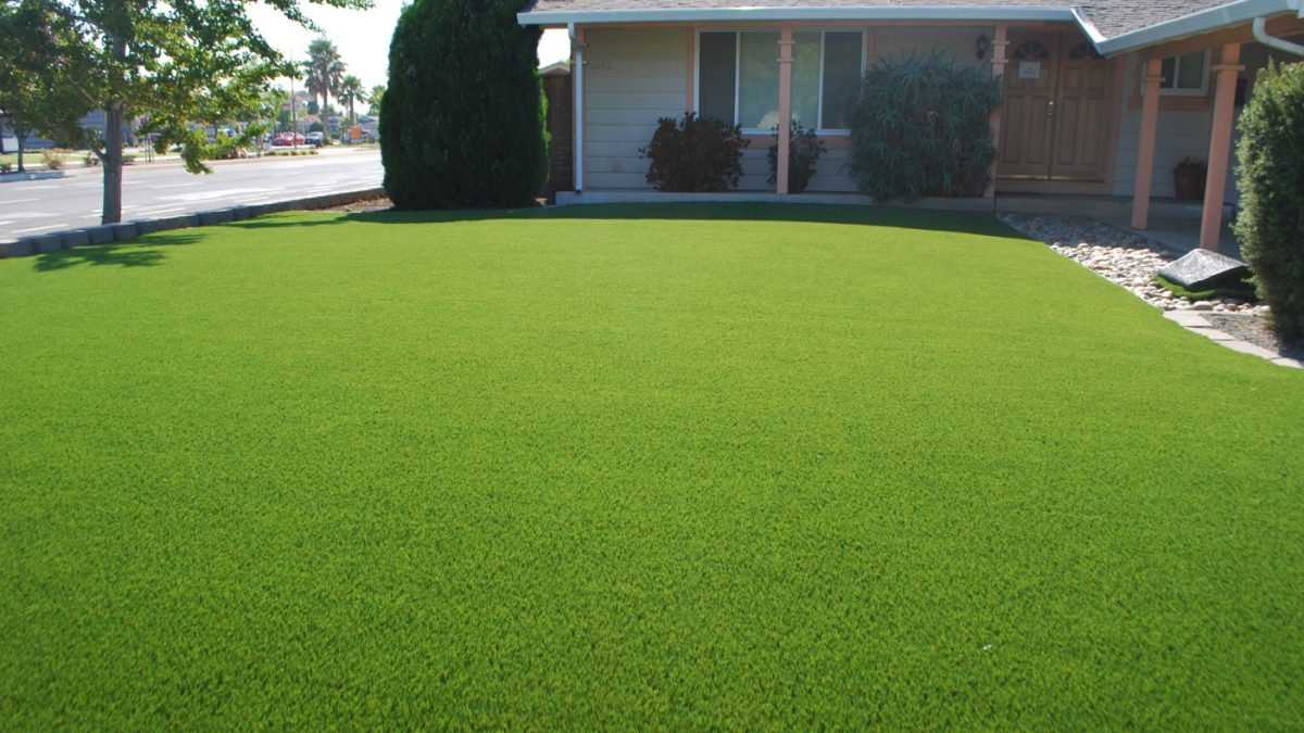 How To Care For Your Artificial Turf When You Have Pets