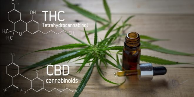 Usage of CBD Oil for Relaxation From Anxiety