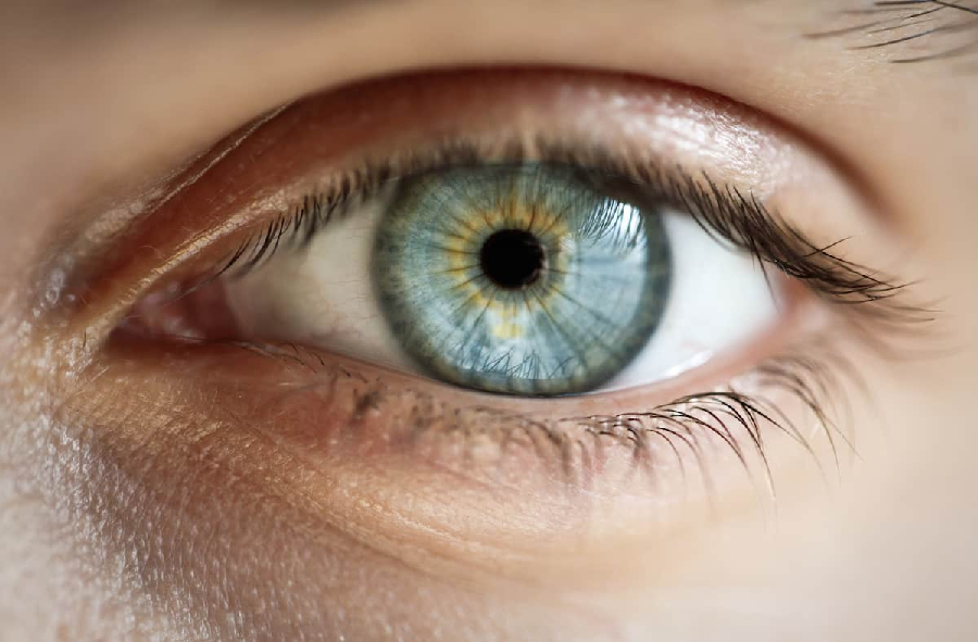 Everything you need to know about eyelid process