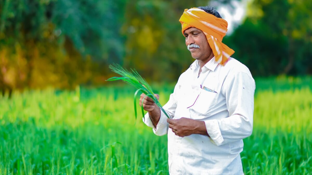 5 crop insurance terminologies you should know about
