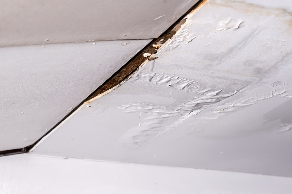 Things You Should Know About Water Damage