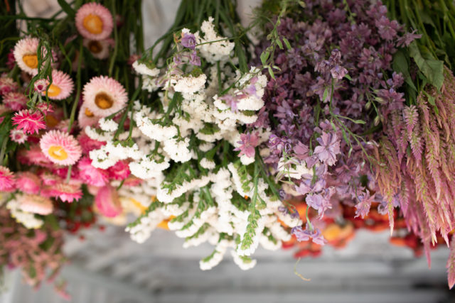 Having Trouble Finding Decorative Dried Flowers? Look At The Top 4 Reasons Why Buying Dried Flowers Online Is A More Suitable Option For You In 2021!