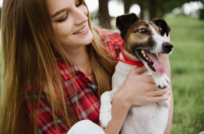 3 Things to Improve the Life of Your Dog