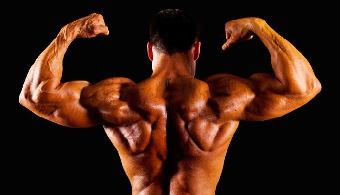 Winstrol benefits in bodybuilding