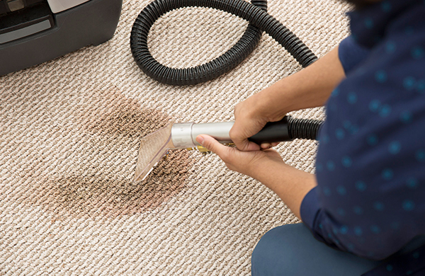 How often do you need to steam clean carpet flooring