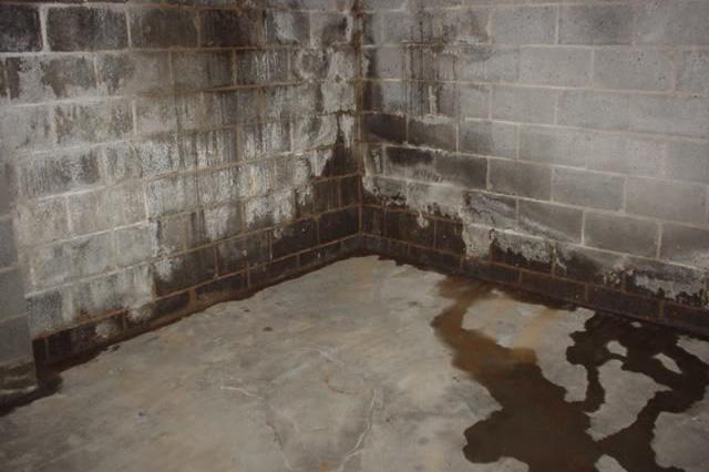 Guide to basement Waterproofing cost in Toronto