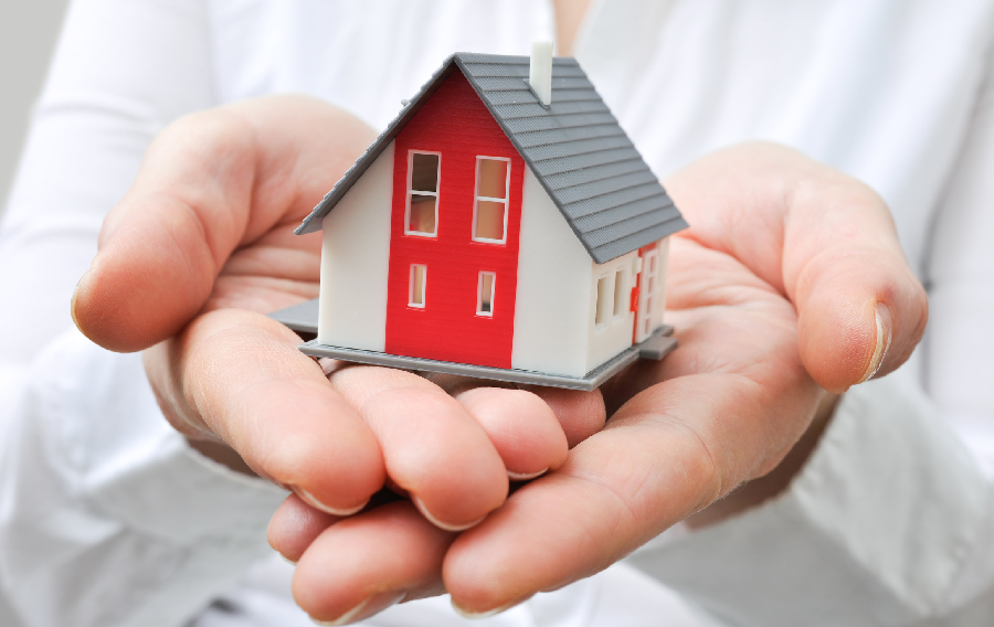 Do you want to know about loans history and consequence?