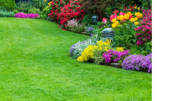 Tips for Choosing the Right Landscape Contractors Singapore Company